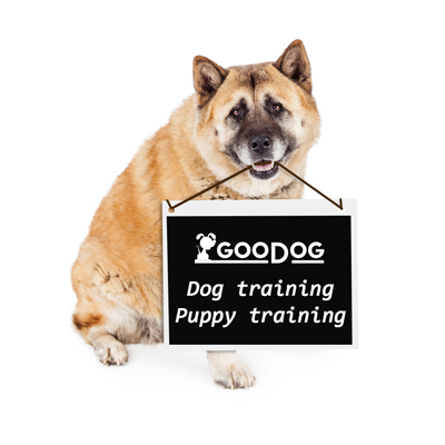 Goodog-dog-training-elanora-heights-with-sign