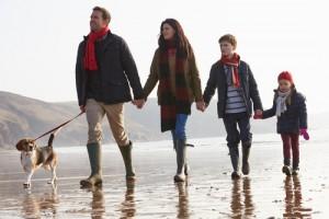 Leash-walking-workshop-for-dogs-Elanora-Heights